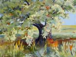 >Landscape Oil Painting Gallery  Gallery of Original Oil Painting The Old Apple Tree
